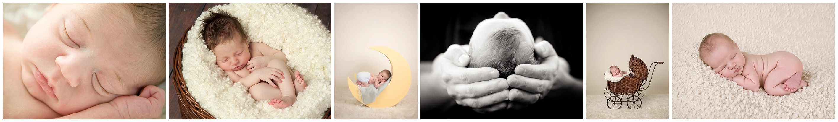 Boston newborn photographer, studio baby portraits