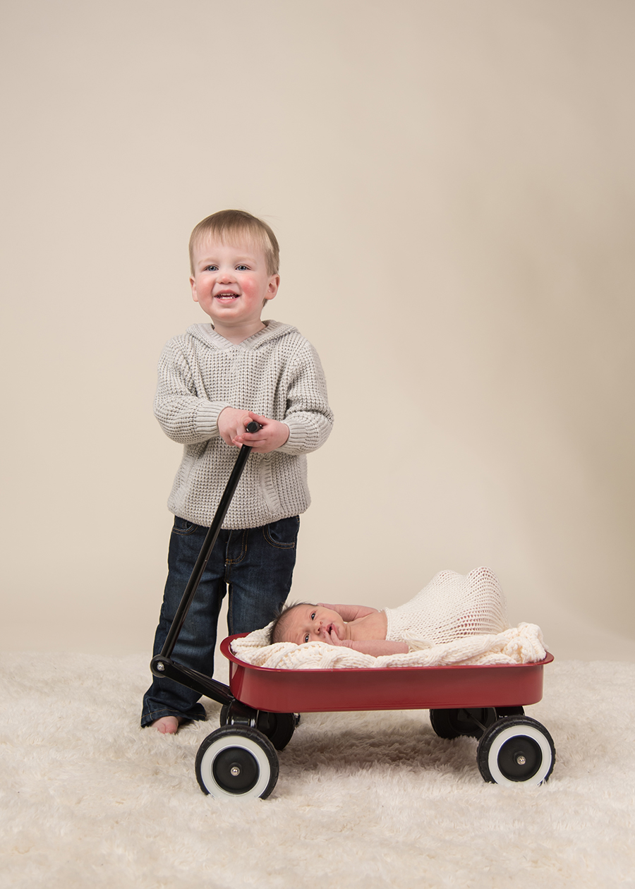 toddler newborn wagon